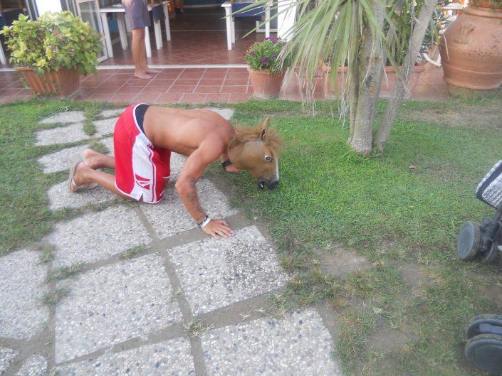 cavallo - bagno oliviero