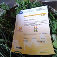 certificato ristorante bagno oliviero